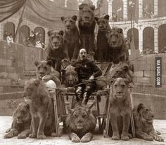 Old school circus lion tamer with his lions. This didn't go wrong as often as you might expect. But when it did, it went REALLY wrong. Old Circus, Night Circus, Vintage Circus, Dark Circus, Creepy Vintage, Vintage Sailor, Old Pictures, Old Photos, Group Of Lions