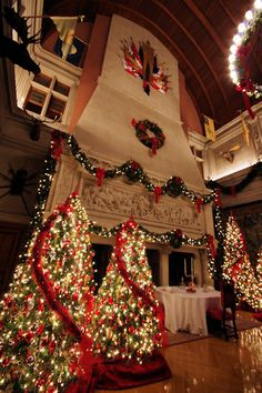 Christmas at Biltmore Estate Photos & Guide