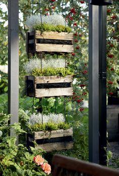 Vanhoista viinilaatikoista koottuun kolmi-kerroksiseen rakennelmaan on helppo vaihtaa istutuksia. Kukkakeinuksi ristitty keksintö sopii hyvin pieneen tilaan, esimerkiksi parvekkeelle. Minna on istuttanut laatikoihin Huiskulasta hankittuja hopealankaa ja variksenmarjaa.