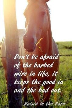 Dont be afraid.