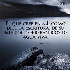 Juan 7:38 El que cree en mí, como dice la Escritura, de su interior correrán ríos de agua viva.♔