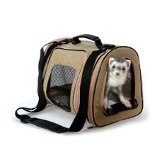 http://www.amazon.com/exec/obidos/ASIN/B000ENIRX0/pinsite-20 Marshall Pet Designer Pet Tote Best Price Free Shipping !!! OnLy 23.54$