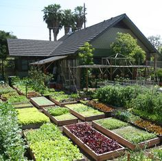 Be prepared to homestead. Picture is from diyprepping.com Potting Sheds, Organic Gardening, Kitchen Gardening, Organic Fruits And Vegetables, Glass Garden, Space Photos, Urban Homesteading, Sustainable Living, Garden Bridge