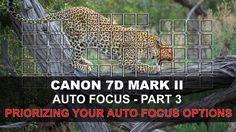 Canon 7D Mark II Auto Focus - Part 3/5: Prioritizing Your Autofocus Options