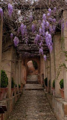 Jardins du Generalife ~ Alhambra, Andalusia, Spain | Flickr - Photo by aurelie_solenne