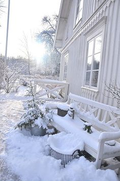 SEASONAL – WINTER – a new-fallen snow appears so peaceful, but still gives me the chills.