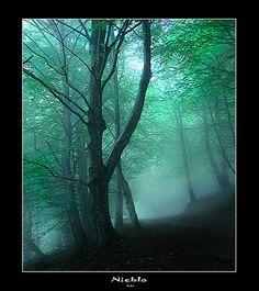 Caminando entre niebla desde Zabalandi hacia el valle de Pol-pol. Bonito lugar para soñar y disfrutar de la paz y la soledad.
