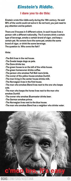 Einstein's riddle. I solved it!  And this goes on this board because Einstein was classy, haha.