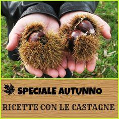 SPECIALE CASTAGNE Chestnut Recipes, Double Chocolate Cookies, Pane Grattugiato, Mayonnaise, Rezepte