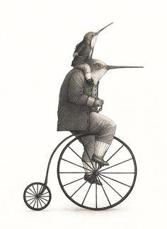 vecchia bici penny farthing con colibrì . black and white drawing