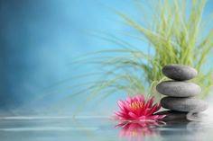 Spa still life with water lily and zen stone in a serenity pool – Institute of Pranic Healing UK & Ireland Framed Artwork, Wall Art Prints, Zen Pictures, Adobe, Lemongrass Spa, Bamboo Art, Zen Meditation, Zen Art, Water Lilies