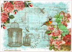 crafts with vintage labels | Imágenes vintage gratis / Free vintage images: Jaulas vintage ...