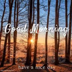 Looking for Good Morning Images with Nature? Check out our collection of Beautiful HD Images, Photos, Pics, Wishes and Greetings to send on Whatsapp for Free. Morning Wishes Quotes, Good Morning Friends Quotes, Happy Sunday Quotes, Good Day Quotes, Morning Inspirational Quotes, Night Quotes, Good Morning Nature, Morning Love, Good Morning Greetings