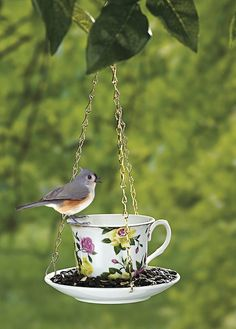 Cute idea, but that bird is obviously photoshopped in.
