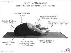 Paschimottanasana - ÊTRE SOI, le blog du développement personnel