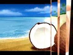 COCO, ACEITE DE COCO, COCONUT OIL, BAJAR DE PESO, MEJORAR PIEL Y PELO - http://dietasparabajardepesos.com/blog/coco-aceite-de-coco-coconut-oil-bajar-de-peso-mejorar-piel-y-pelo/