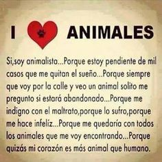 Yo soy animalista