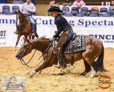Reining Horses, Dressage, American Quarter Horse, Quarter Horses, Cutting Horses, Rodeo Life, Western Riding, Sports Massage, Horse Ranch