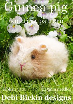 guinea pig knitted toy pattern from www.debibirkin.com