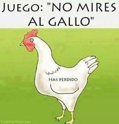 Juego: No mires al gallo. #humor #risa #graciosas #chistosas #divertidas