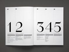 graphic,design,index,magazine,numbers,print,typography-1a4017a37bbb0a500e7dc5a6bc7a3cf7_h.jpg (500×375)