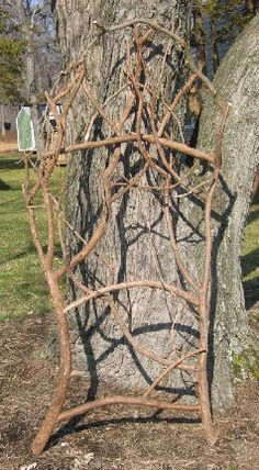 images trellises made from branches and vines - Google Search