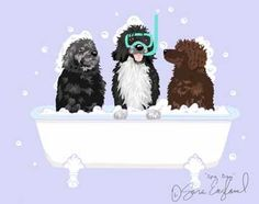 Spa Day Portuguese Water Dog - 11x14 Matted Print Sara England Designs