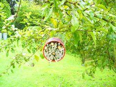 Wildbienen- und Insektenhotel selber bauen
