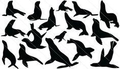 Sea Lion Silhouette Vector (16)