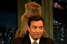 24 Moments That Prove Jimmy Fallon Is Perfect