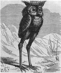 """Stolas is a Great Prince of Hell, commands twenty-six legions of demons (twenty-five according to other authors), and teaches astronomy and the knowledge of poisonous plants, herbs and precious stones. He is also known as Stolos and Solas. He is depicted as either being a crowned owl with long legs, a raven, or a man. From Jacques Collin de Plancy's """"Dictionnaire Infernal"""", illustrated by Louis Le Breton."""