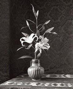 "D W Mellor, Ann's Lily, San Gimignano, 2002 (2009), 2/10, Iris Print (32x26""), Framed = 41 x 35"