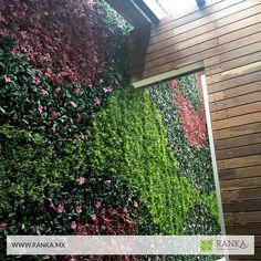 ¡Ranka es muy sencillo de instalar y no necesita mantenimiento!  Tú mismo puedes instalar un muro verde en menos de un día, no necesita acabado previo ni mantenimiento. Pregunta por el Helecho, es uno de los modelos con mayor realismo. ¡Te va a encantar! Cotiza en línea ➜ www.ranka.mx  Recibe nuestro catálogo de plantas   y follaje artificial enviándonos un correo a ventas@ranka.mx  Tenemos envíos a todo México de 1 a 7 días hábiles.