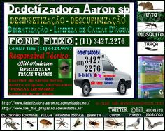 _11-6424.9997-ddt_aaron