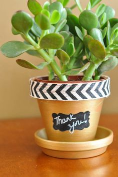 Golden flowerpot with chalkboard paint labels - Suburble.com