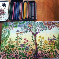 I used Prismacolor pencils and pastel chalks for the background in Secret Garden.