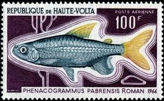 Burkina Faso Afrika MüHsam Briefmarken Republique De Haute-volta Stamps Biche