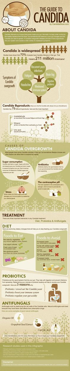 An infographic showing the causes, symptoms, diagnosis and treatment of Candida. How to beat your Candida by using antifungals and probiotics.