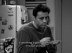 """""""everything's gonna be fine... it's just a crush."""""""