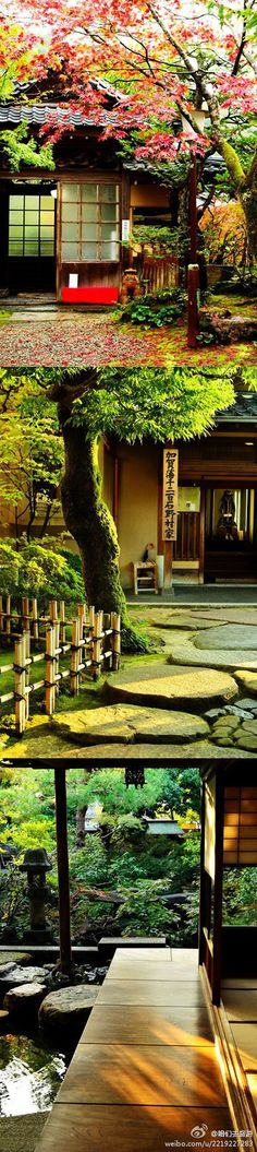 Japanese Garden Aesthetic
