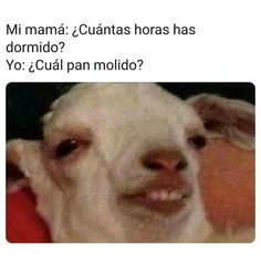 Me: I Won't Get Too High Tonight Me An Hou. ~ Memes curates only the best funny online content. Mexican Funny Memes, Funny Spanish Memes, Spanish Humor, Stupid Funny Memes, Funny Relatable Memes, Kpop Memes, Dankest Memes, Roblox Memes, Pinterest Memes