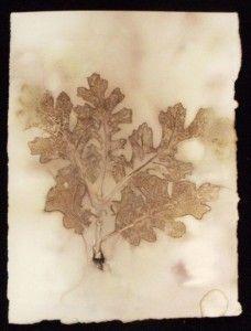 Jamila Rufaro eco-print oak jamila rufaro.com/eco-print-tutorial/