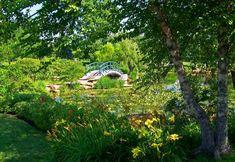 lugares-para-conhecer-a-partir-de-paris-giverny-frança-jardim-claude-monet-ponte