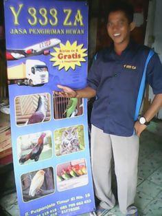 Y333ZA CARGO PUSAT INFORMASI JASA KIRIMAN HEWAN KE SELURUH INDONESIA