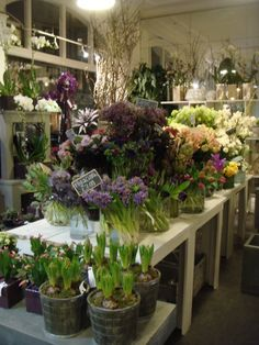 I absolutely love going into a great florist shop (Jane Packer)