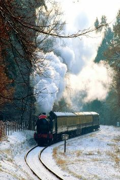 Forest of Dean, England Um belo passeio! GWR loco and rolling stock