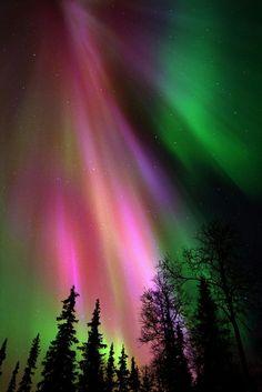 aurora borealis by coco-nyc