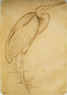 Pisanello, a Heron, mid 15C. Codex Vallardi 2450, Louvre, Paris.