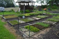 How to Build a Plant Propagation Bed for Rooting Cuttings. Tens of Thousands of Rooted Cuttings Waiting to be Potted. Outdoor Projects, Garden Projects, Cuttings, Plant Propagation, Weed Barrier, Market Garden, Weed Control, Plant Nursery, Hedges