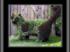 How to Make a Topiary - 3 methods - wire stuffed with moss, wire filled with soil retained by coco liner, wire frame training evergreen - covers some basics, and gives cool examples - from Frankster via Squidoo